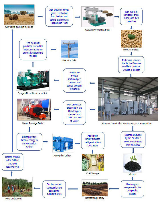 Biomass-to-Energy