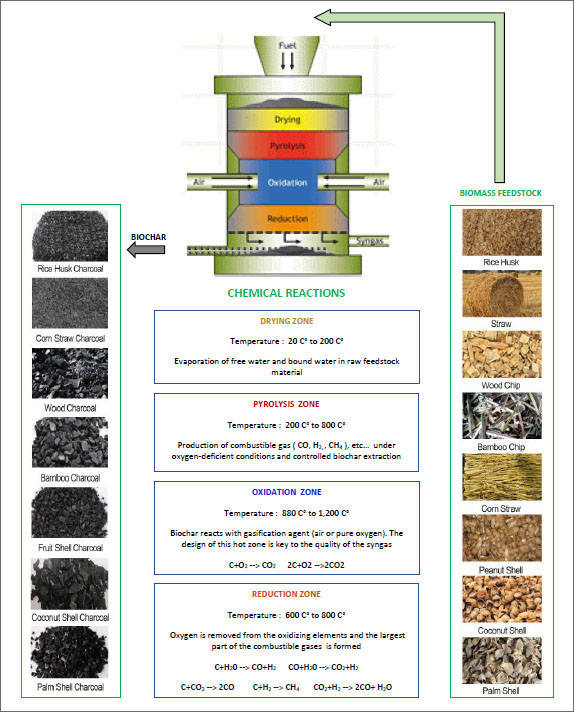 Notions about Biomass Gasification